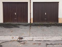 Two garages III