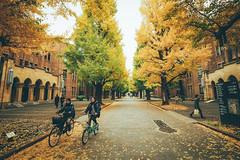 東京大學 Tokyo