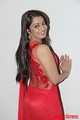 Kannada Times_Nikita Thukral_094