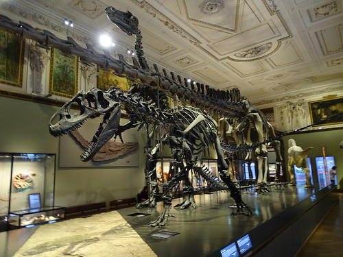 """Naturhistorisches Museum Wien • <a style=""""font-size:0.8em;"""" href=""""http://www.flickr.com/photos/160223425@N04/24938626468/"""" target=""""_blank"""">View on Flickr</a>"""