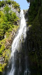 "Madeira flowing water • <a style=""font-size:0.8em;"" href=""http://www.flickr.com/photos/160223425@N04/37928471165/"" target=""_blank"">View on Flickr</a>"