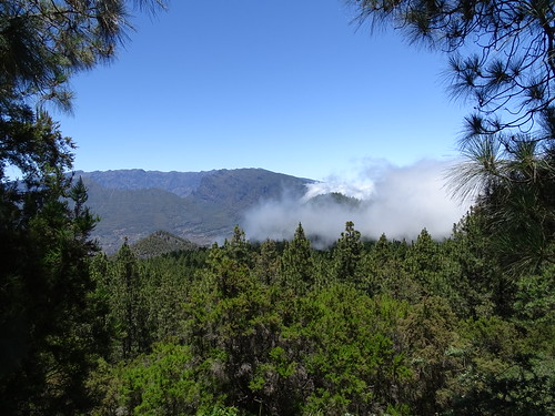 "La Palma • <a style=""font-size:0.8em;"" href=""http://www.flickr.com/photos/160223425@N04/37968535155/"" target=""_blank"">View on Flickr</a>"