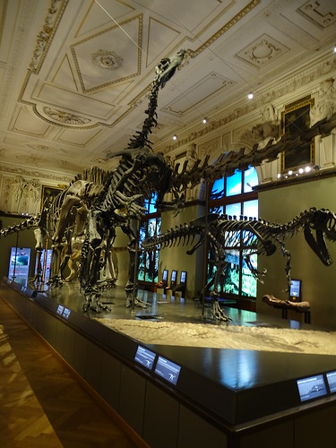 """Naturhistorisches Museum Wien • <a style=""""font-size:0.8em;"""" href=""""http://www.flickr.com/photos/160223425@N04/38810899191/"""" target=""""_blank"""">View on Flickr</a>"""