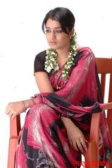 Kannada Times_Nikita Thukral_113