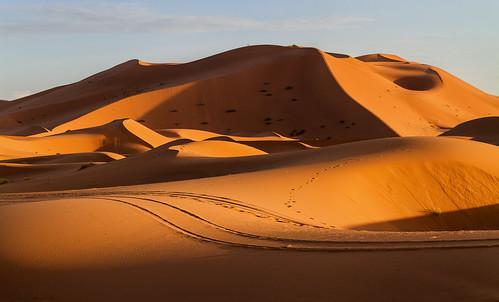 Sanddünen im Abendlicht
