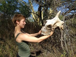 Intern Tyla Barnwell and giraffe skull, Ukuwela Conservancy