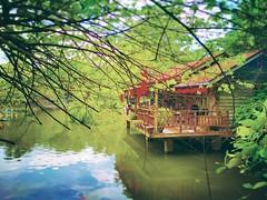 Farm In The City - Lot 40187–40788, Jalan Prima Tropika Barat, Bandar Putra Permai - http://4sq.com/Kn6cNL #zoo #travel #holiday #green #Asian #Malaysia #Selangor #Serikambangan #travelMalaysia #holidayMalaysia #动物园 #旅行 #度假 #绿色 #亚洲 #马来西亚 #雪兰莪 #马来西亚度假 #马来西