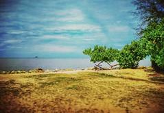 Pantai Remis - Jeram - http://4sq.com/q6BcrK  #travel #holiday #beach #tree #nature #Asian #Malaysia #Selangor #PantaiRemis #travelMalaysia #holidayMalaysia #旅行 #度假 #海滩 #树木 #大自然 #亚洲 #马来西亚 #雪兰莪 #马来西亚度假 #马来西亚旅行 #pantai #sky #天空