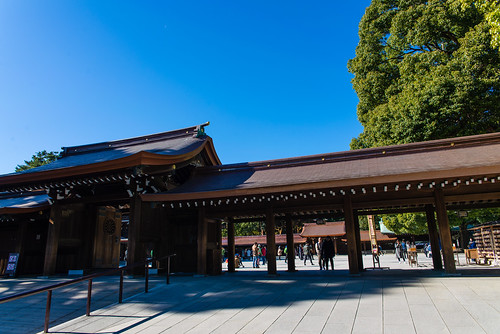 Meiji Shrine / 明治神宮