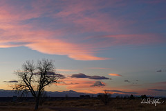 Pink Clouds Over Long's Peak