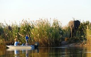 fishermen and ellies on the Zambezi