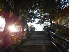 Sunrise in Omkar Hills Photography By Chinmaya M (175)