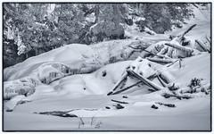 2018-01-20 20/365 Lower Chippewa Falls in Winter