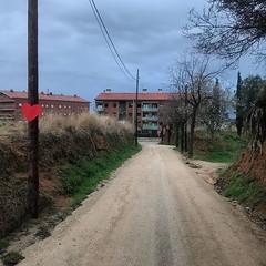 Camí de l'Alegria L'Ajuntament va arranjar el camí de l'Alegria a finals del 2015. Junts per Tiana va impulsar les al·legacions que va presentar l'oposició per evitar que s'acabés instal·lant a la zona de l'ermita una placa de formigó i va vetllar per un
