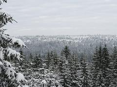 Harz-Oderbrueck_e-m10_1012074060
