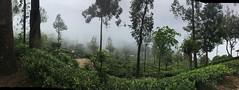 Wanderung in Haputhale