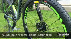 Scalpel_team_09