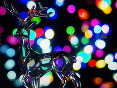"""Roslyn Bokeh9 • <a style=""""font-size:0.8em;"""" href=""""http://www.flickr.com/photos/145215579@N04/39143398252/"""" target=""""_blank"""">View on Flickr</a>"""