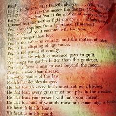 Fear Proverbs