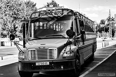 B&W Thomas School Bus
