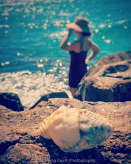 Melissa and seashell