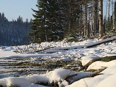 Harz-Oderbrueck_e-m10_1012074127