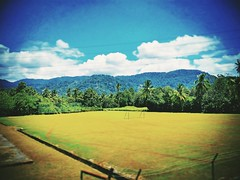 Kampung Katup 71750 Lenggeng, Negeri Sembilan https://goo.gl/maps/zfv6Fhh5q7n  #tree #trip #travel #holiday #traveling #tree #Asian #Malaysia #negerisembilan #holidayMalaysia #travelMalaysia #nature #大自然 #树 #旅行 #度假 #亚洲 #马来西亚 #森美兰 #马来西亚度假 #自游马来西亚 #Lenggeng