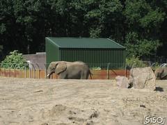 IMG_2590_Burgers_Zoo