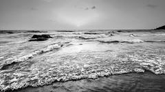 Coastal Click - Kokan