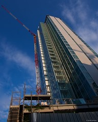 IMGP3701 Torre Galfa