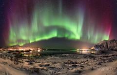 Northern lights over Fredvang