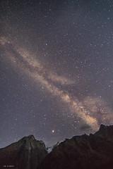 himalayan nights