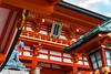 Photo:伏見稲荷大社 (Fushimi inari taisha in Kyoto) By
