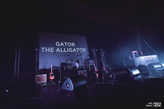 20190112 - Gator, The Aligator | Final Festival Termómetro @ Cinema São Jorge