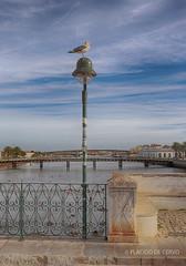 Tavira - Ponte sobre o Rio Gilão