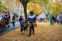070fotograaf_20181124_Benoordenhout Sinterklaas_FVDL_Stadsfotografie_6586.jpg