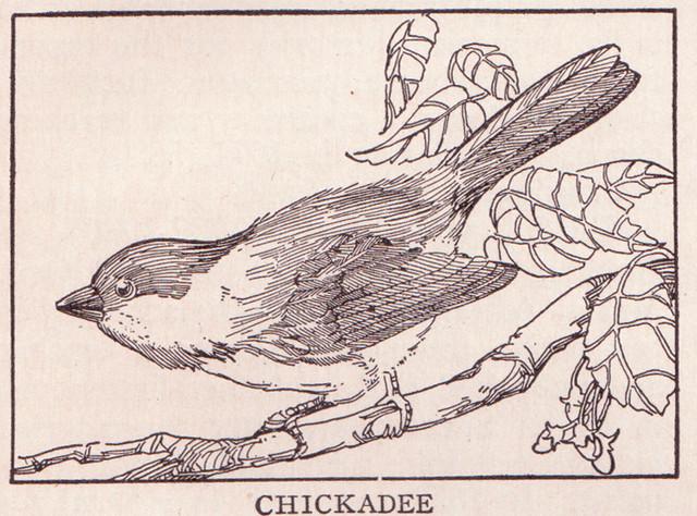 Chickadee page 577