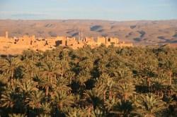 Palmeiral e aldeia de Nkob