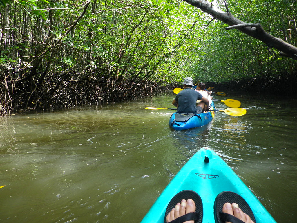 Krabi Kayak, what to do in krabi