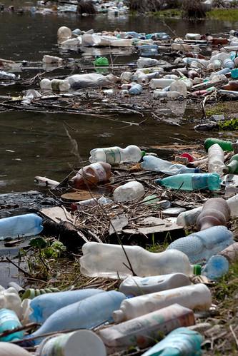 Residus de plàstic a la riba d'un llac