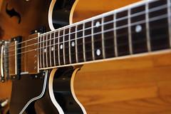 Gibson 335 neck