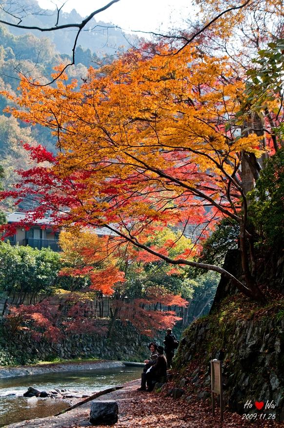 1126_kyoto_1045