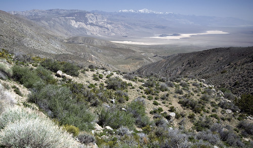 Saline Valley Hunter Mountain Racetrack and beyond