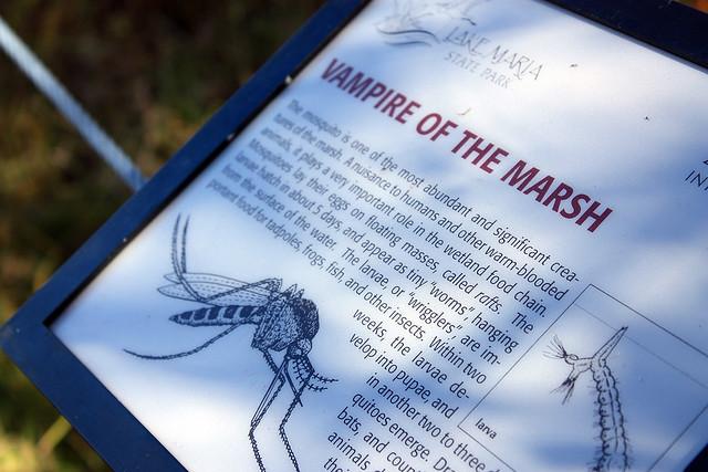 Interpretive sign describing the mosquito as 'vampire of the marsh'