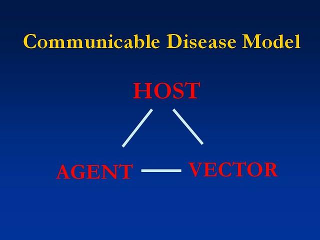 Communicable Disease Model Flickr