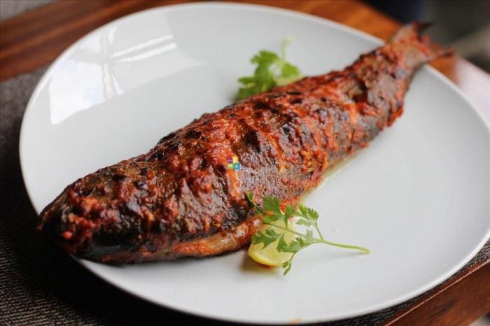 punjab grill tappa #tappalicious new menu cyber hub gurugram