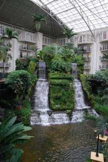 Gaylord Opryland Hotel 038 February 2010 Road Trip