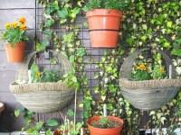 Balcony Garden, Trellis and Half Baskets | Flickr - Photo ...