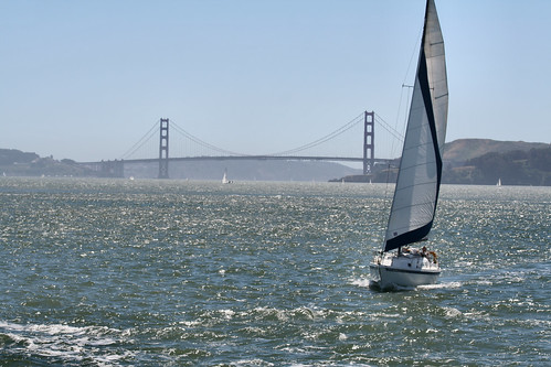 Sailing the Bay (7837a)