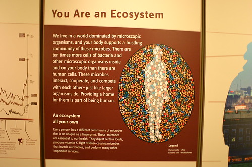 You Are an Ecosystem